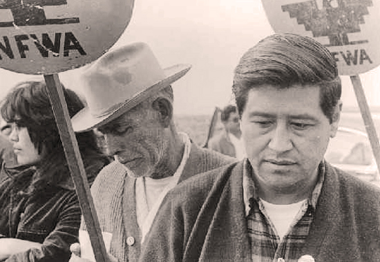 CESAR CHAVEZ IN ACTION