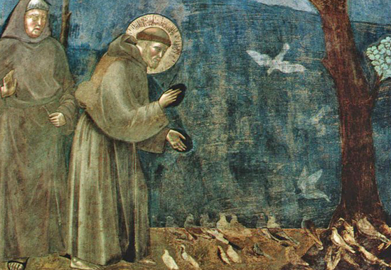 GIOTTO'S ST FRANCIS OF ASSISI - SERMON TO, NOT FOR, THE BIRDS