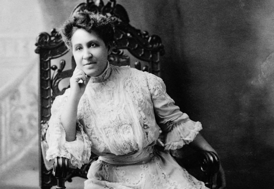 """THE CHASM YAWNS SO WIDE AND DEEP"" - MARY CHURCH TERRELL 1906"