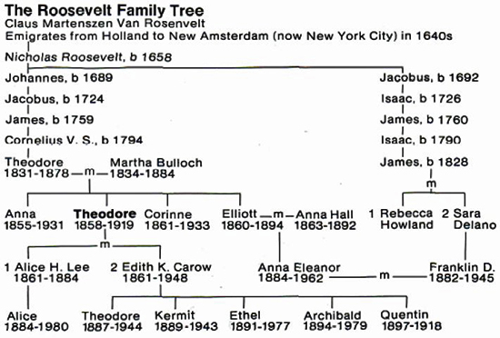 The Roosevelt Family Tree: Theodore, Franklin Delano, Eleanor