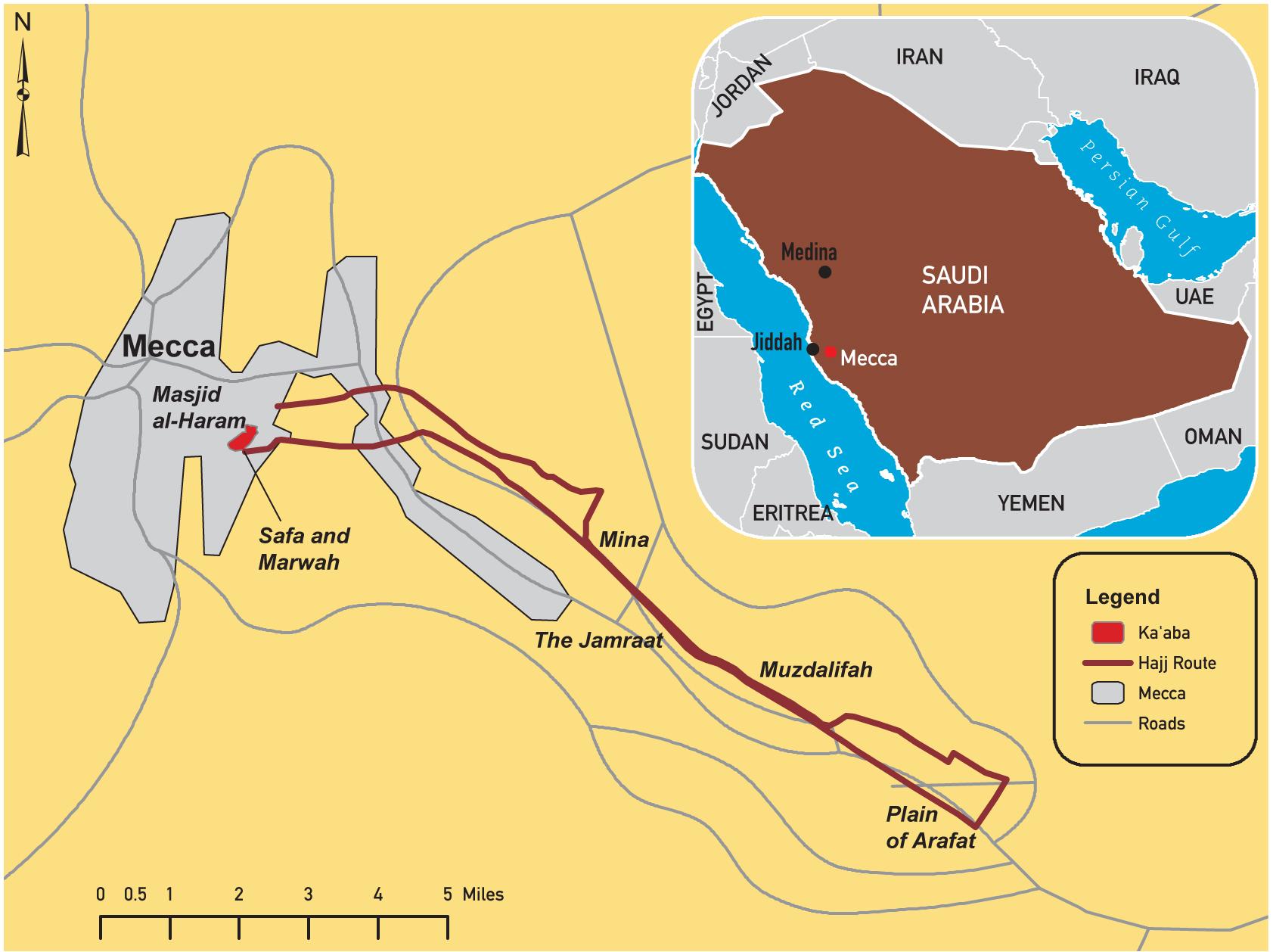 of Saudi Arabia 2011