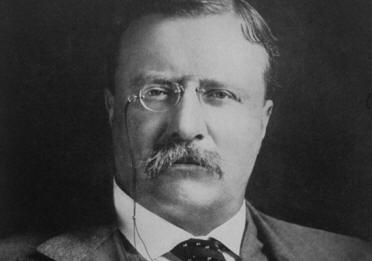 THEODORE ROOSEVELT - PRESIDENT OF THE U.S. 1901-1909